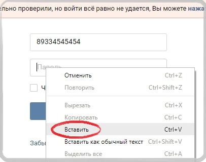 Вставляем скопированный пароль Вконтакте.