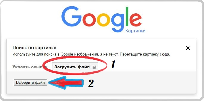 Поиск Google по картинке